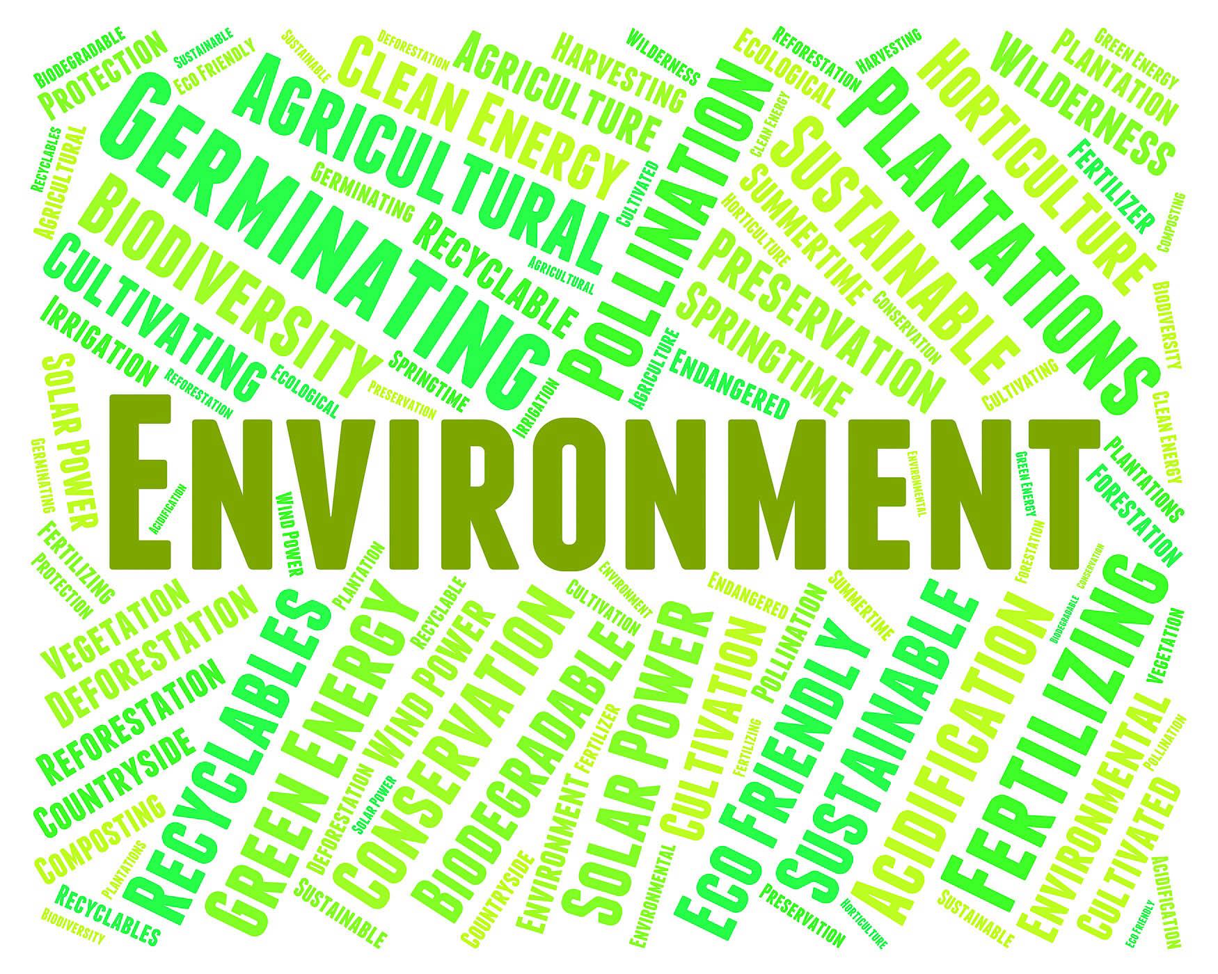 Um despertar nacional: a crescente cultura de reciclagem na Nigéria